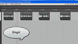 Voice Over Recording Tips: Editing Conversations In Reaper