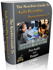 Newbies Guide To Audio Recording Awesomeness 2: Pro Recording With Reaper